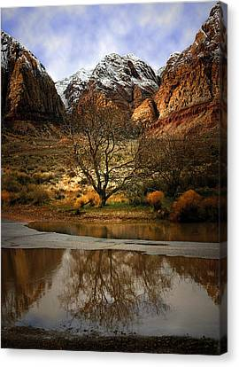 Winter Reflections Canvas Print by Nabila Khanam