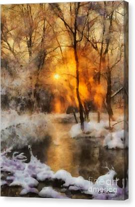 Winter Sunset Canvas Print by Elizabeth Coats