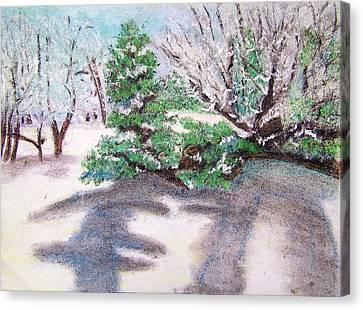 Winter Trees Canvas Print by Katina Cote