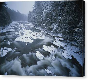 Winter View Of The Ausable River Canvas Print by Michael Melford