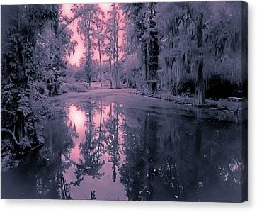 Winterland In The Swamp Canvas Print by DigiArt Diaries by Vicky B Fuller