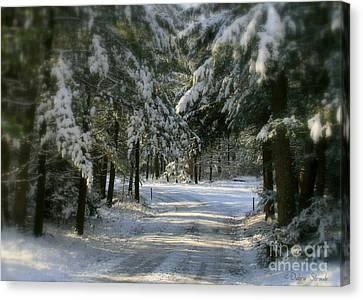 Winter's Tranquility Canvas Print by Debra Straub