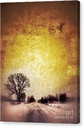 Wintery Road Sunrise Canvas Print by Jill Battaglia