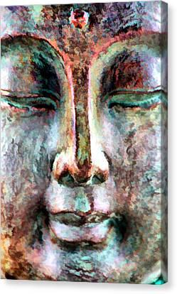 Wisdom Canvas Print by Brian Davis