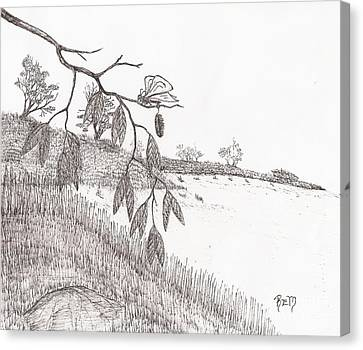 With New Wings... - Sketch Canvas Print by Robert Meszaros