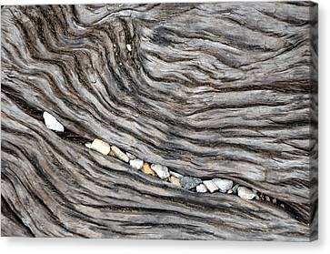 Wood Railroad Tie Pebbles Canvas Print by David Kozlowski