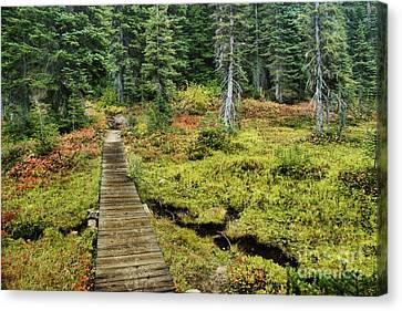 Wooden Foot Bridge Over Stream Canvas Print by Ned Frisk