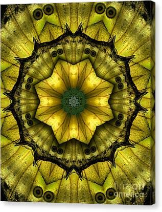 Yellow Butterfly Wing Kaleidoscope Mandala Canvas Print by Janeen Wassink Searles