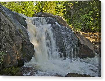 Yellow Dog Falls 4192 Canvas Print by Michael Peychich