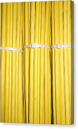 Yellow Network Cables Canvas Print by Matthias Hauser