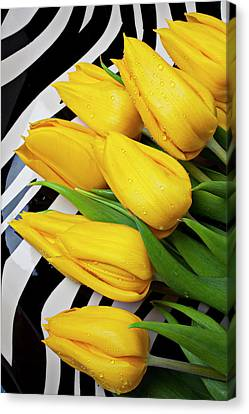 Yellow Tulips On Striped Plate Canvas Print by Garry Gay
