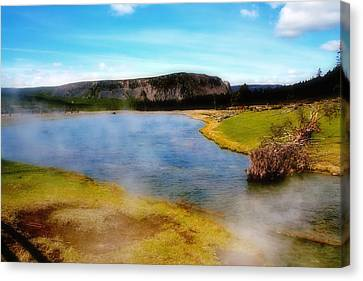 Yellowstone Landscape Canvas Print by Ellen Heaverlo