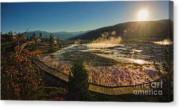 Yellowstone National Park - Minerva Terrace - 05 Canvas Print by Gregory Dyer