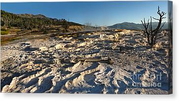 Yellowstone National Park - Minerva Terrace - 07 Canvas Print by Gregory Dyer