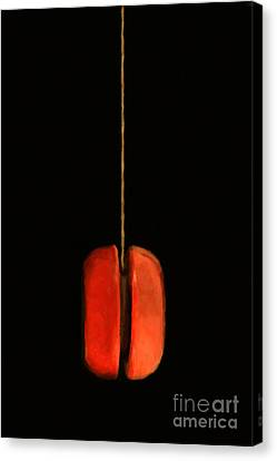 Yo-yo - Painterly Canvas Print by Wingsdomain Art and Photography