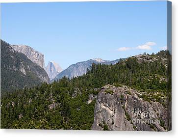 Yosemite Canvas Print by Henrik Lehnerer