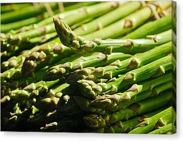 Yummy Asparagus Canvas Print by Connie Cooper-Edwards