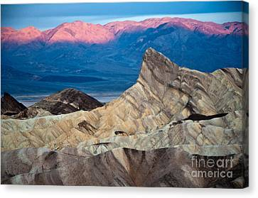 Zabriskie Point Dawn Canvas Print by Jim Chamberlain