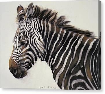 Zebra  Canvas Print by Odile Kidd