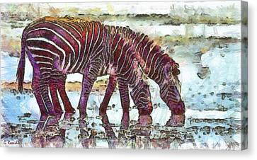 Zebras Canvas Print by George Rossidis