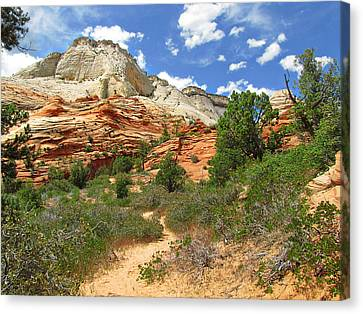 Zion National Park - A Picturesque Wonderland Canvas Print by Christine Till