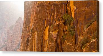 Zion Storm Canvas Print by Adam Pender