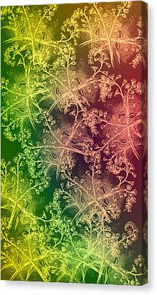 Fall Brush Canvas Print by Evelyn Patrick