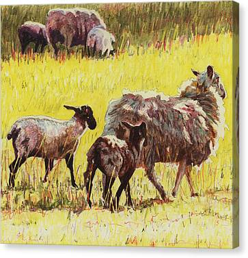 Following Canvas Print by Helen White
