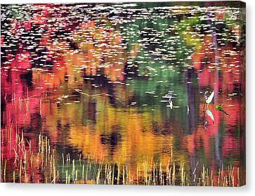 New England Reflections Canvas Print by Betty LaRue