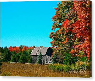 Old Barn In Fall Color Canvas Print by Robert Pearson