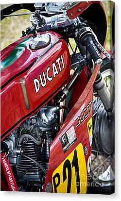 Racing Ducati  Canvas Print by Tim Gainey