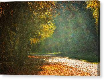 . Sunshine And Rain . Canvas Print by SK Pfphotography
