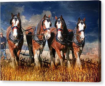 The Team Canvas Print by Trudi Simmonds