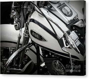 1 - Harley Davidson Series  Canvas Print by Lainie Wrightson
