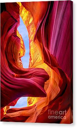 Endless Beauty Canvas Print by Mikes Nature
