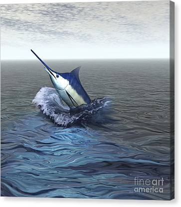 A Blue Marlin Bursts From The Ocean Canvas Print by Corey Ford