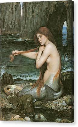 A Mermaid Canvas Print by John William Waterhouse