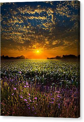 A New Day Canvas Print by Phil Koch