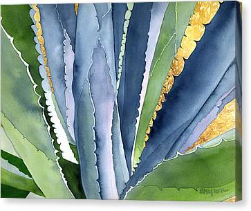 Agave 2 Canvas Print by Eunice Olson