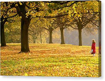 Alone In The Park Canvas Print by Kobby Dagan