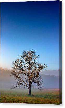 Autumn Glow Canvas Print by Rick Berk