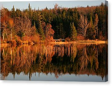 Autumn Lake Canvas Print by Kate  Leikin