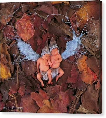 Autumn Leaf Fairies Canvas Print by Anne Geddes