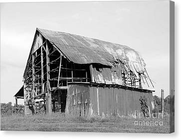 Barn In Kentucky No 75 Canvas Print by Dwight Cook