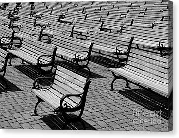 Benches Canvas Print by Perry Webster