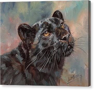 Black Leopard Canvas Print by David Stribbling
