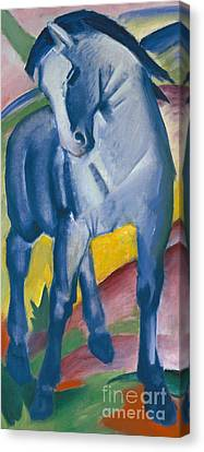Blue Horse Canvas Print by Franz Marc