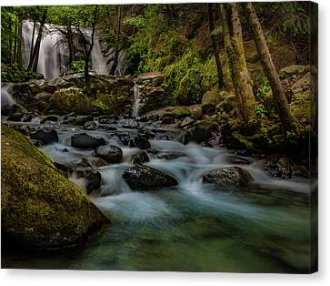 Brandy Creek Falls Canvas Print by Michele James
