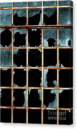 Broken Window Canvas Print by Carlos Caetano
