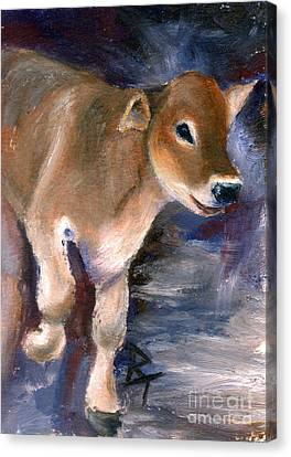 Brown Swiss Calf Aceo Canvas Print by Brenda Thour